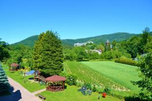 ogródek z góry